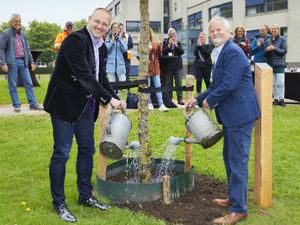 Linde ter gelegenheid van World Bee Day